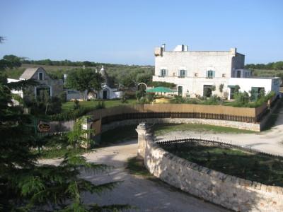 Vineyard wedding in Puglia